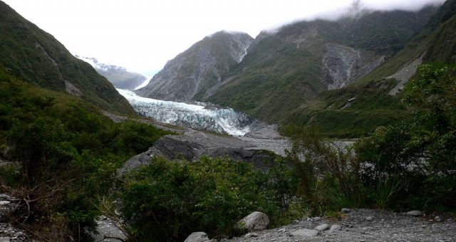 Fox Glacier Valley Walk und Fox Glacier im Westland National Park, Neuseeland